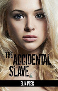 The Accidental Slave by Elin Peer